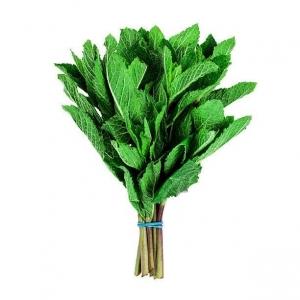 Mint, hierbabuena, menta, plantas aromaticas