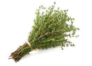 Thyme, Tomillo, plantas aromaticas